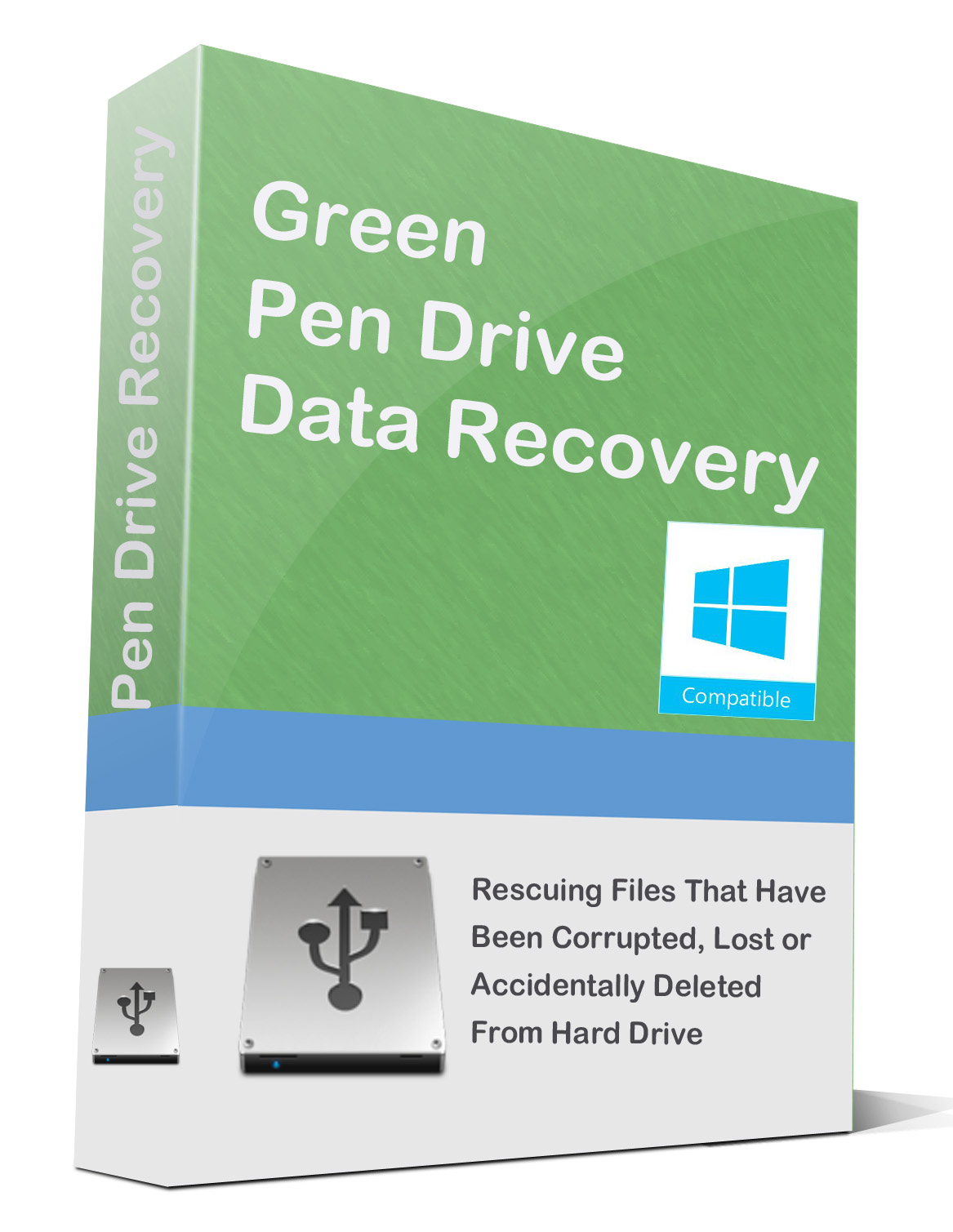 best-data-recovery-green-pen-drive-data-recovery-1-year-license-logo.jpg