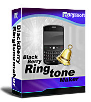 bigasoft-corporation-bigasoft-blackberry-ringtone-maker-logo.jpg
