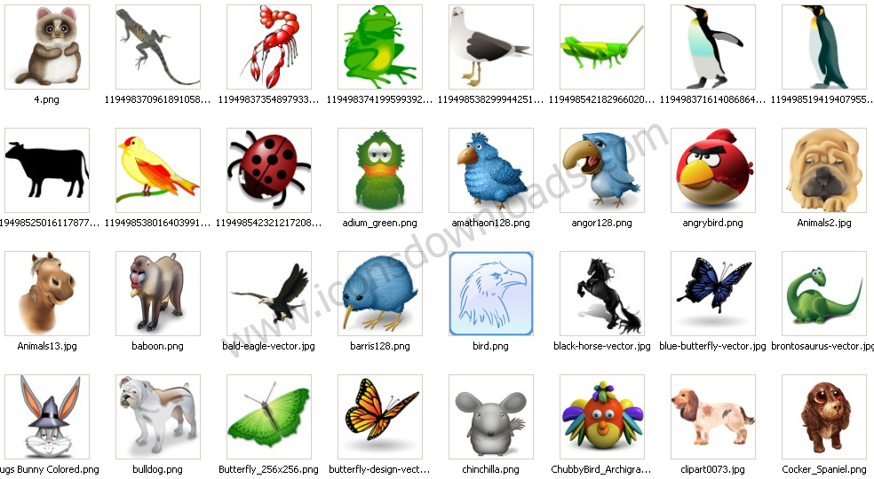 d-m-r-upul-animals-wildlife-icons-logo.jpg