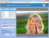 e-software-apex-image-watermark-software-corporate-license-logo.jpg
