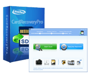 lionsea-software-co-ltd-memory-stick-recovery-professional-logo.png