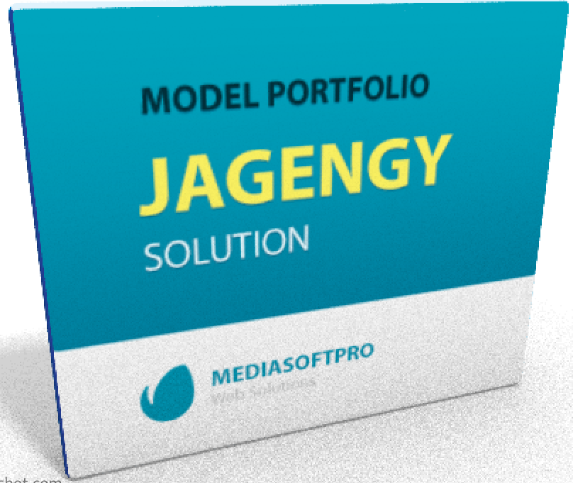 mediasoft-pro-jagency-model-portpolio-booking-system-logo.png