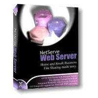 net-x-solutions-ltd-netserve-web-server-logo.jpg