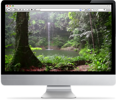 screensaver-plus-tropical-rainforest-screensaver-logo.png