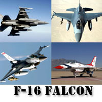 tazmaniacs-f-16-falcon-screensaver-gold-edition-logo.jpg