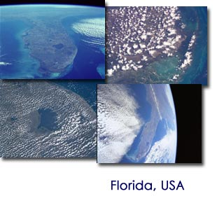 tazmaniacs-from-space-florida-screen-saver-logo.jpg